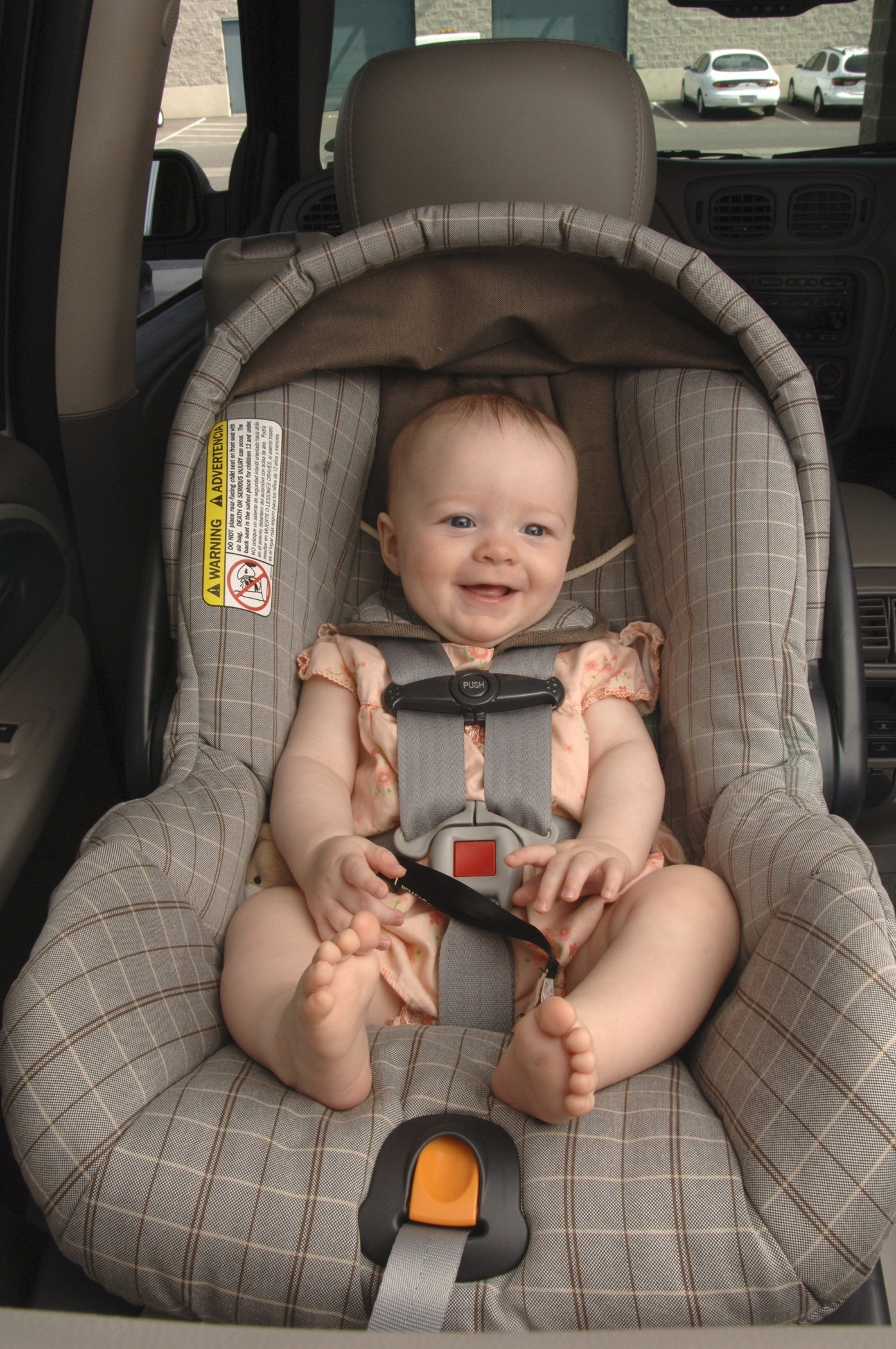 Child Safety Seat Distribution