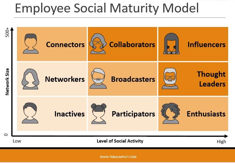 employee-social-maturity-model
