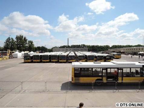 Bus-Fahrschule