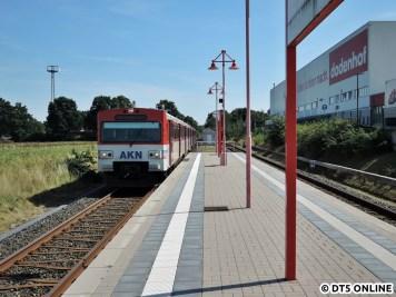 dodenhof, 06.08.2015 (13)