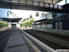 Henstedt-Ulzburg, 03.08.2015 (2)