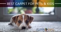 Carpet Installers Fairfield: Best Carpet for Pets & Kids