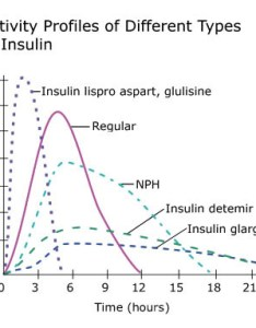 Graph illustrating the time action curves of different insulins also types insulin diabetes education online rh dtc ucsf