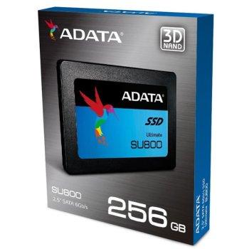 Adata SU800 SSD