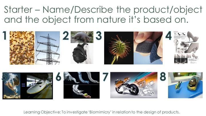 Year 8 Biomimicry Lesson-page-005