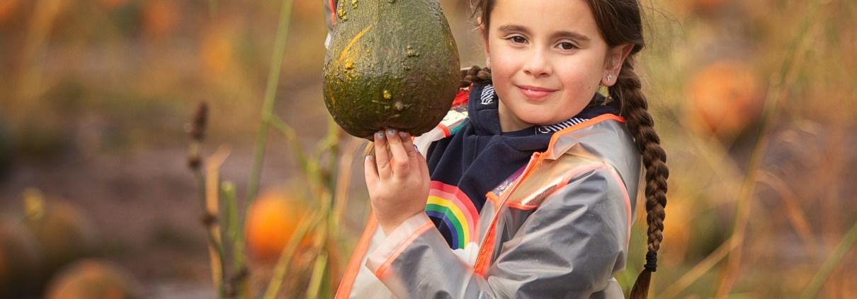 pumpkin picking glasgow