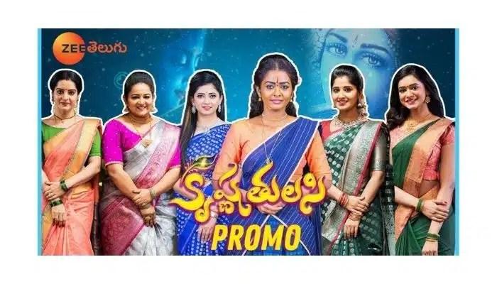 Krishna Tulasi serial cast