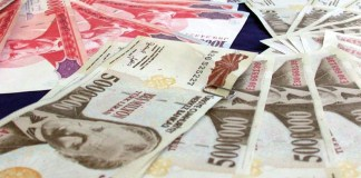 Türkische Lira bei Japanerinnen wieder hoch im Kurs