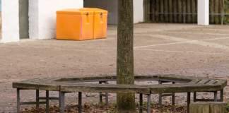 Eine Bank steht am 21.11.2014 in Tübingen (Baden-Württemberg) unter einem Baum. An diesem Ort griffen am 17.11.2014 mehrere Mädchen im Alter zwischen 13 und 14 Jahren eine 13-Jährige an und traten auf sie ein. Die Attacke wurde mit einem Smartphone gefilmt.
