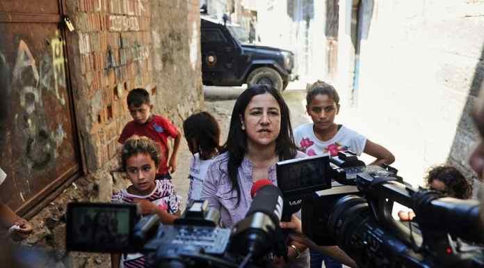 Medienkompetenz, Soziale Netzwerke, Frieden, Graue Wölfe, Kurden, Türkei, Türken