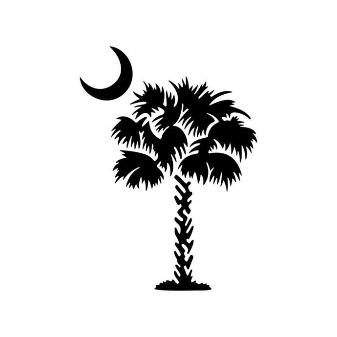 Palmetto Tree South Carolina Palm Beach Moon by