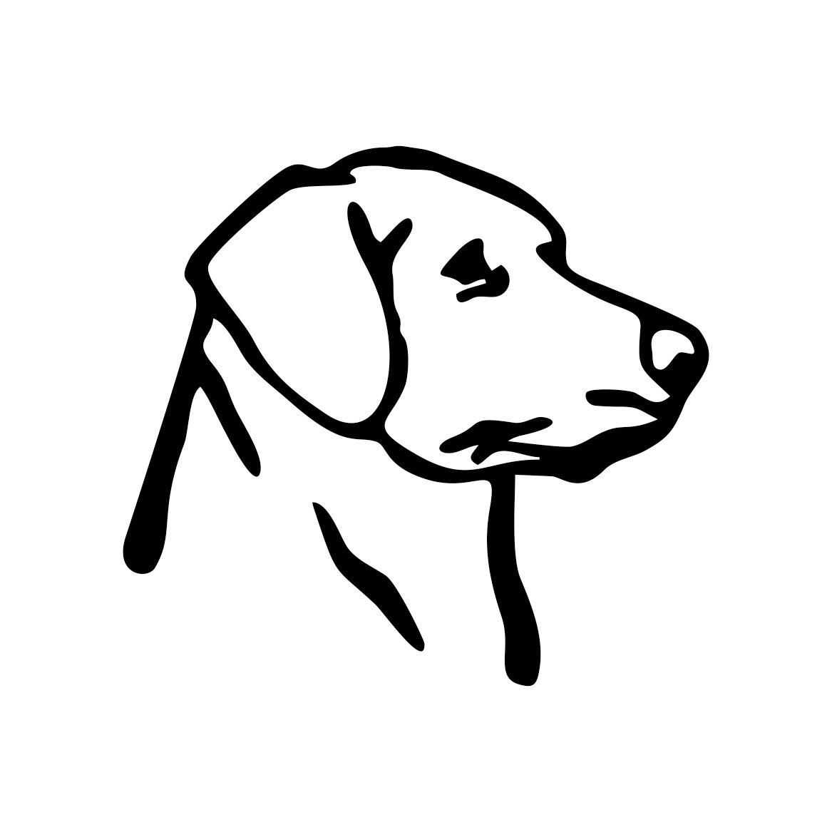 Labrador Retriever Dog Graphics Design Svg By Vectordesign