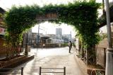 聖地巡礼記:路娘MOTION鉄道車両擬人化プロジェクト@三ノ輪橋・飛鳥山