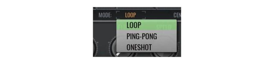 loop-avenger