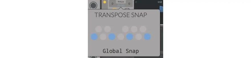 global-snap-transpose-snap-vital
