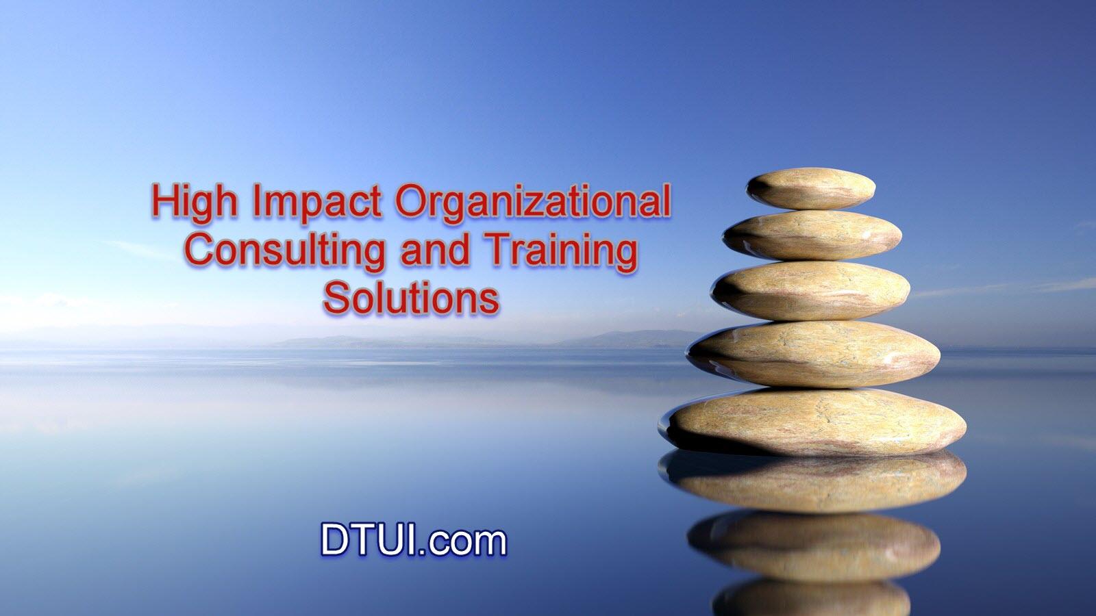 DTUI.com Services & Solutions