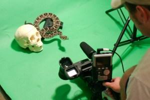 greenscreen video