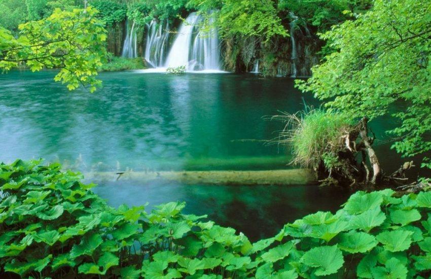 Hình ảnh và bản đồ vườn quốc gia Phú Quốc