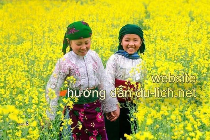 Các địa điểm nên tham quan chụp ảnh tại Đồng Văn