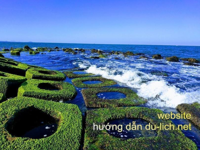 Hình ảnh Phú Yên Flycam: bờ kè phủ rêu ở xóm Rớ