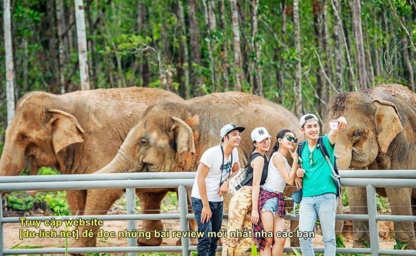 Check in chụp ảnh tại khu nuôi voi của Safari Phú Quốc