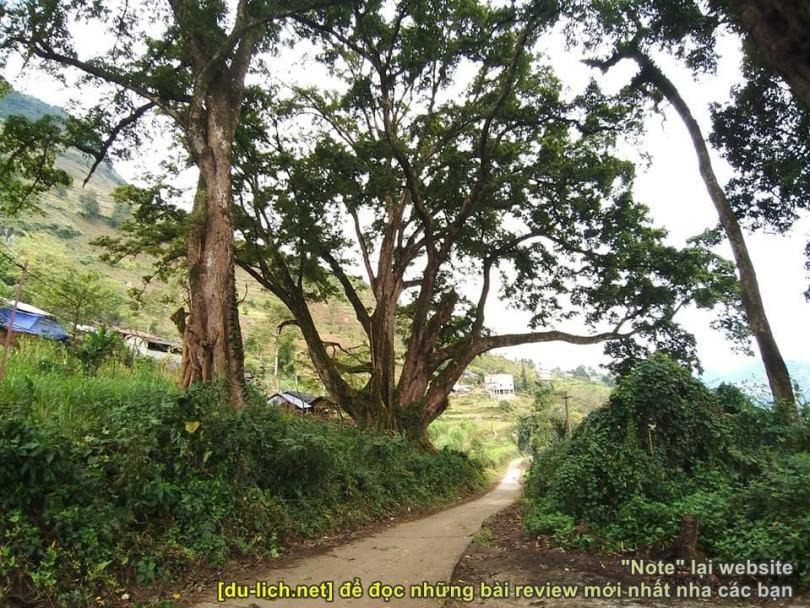 Con đường vào bản Thiên Hương