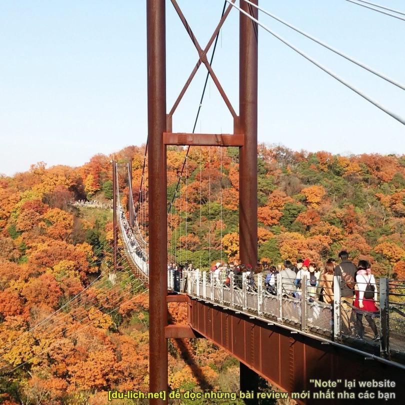 Hình ảnh cầu treo Hoshi no Buranko - công viên Hoshida 2