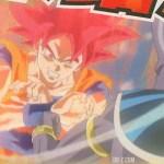 Goku-Super-Saiyan-God-21