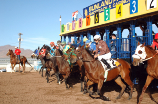 Sunland Park Horse Racing