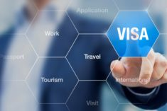 long term uae visa