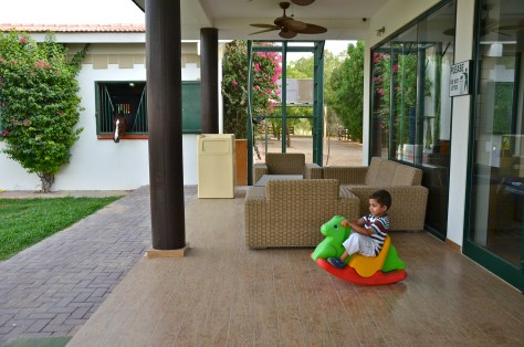 Even kids enjoy at the Desert Palm Per Aquum Horse stables