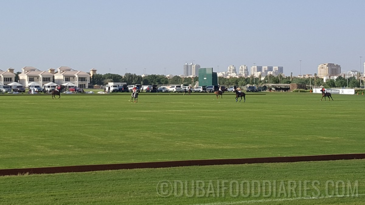 Polo brunch at The St. Regis Dubai, Al Habtoor Polo Resort and Club