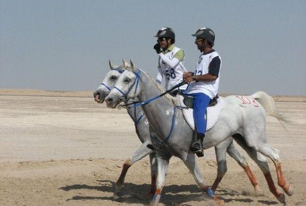 Lovas Al Jiyad