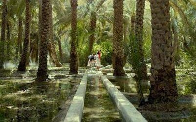 Az ősi öntözőrendszer Al Ain oázisvárosban