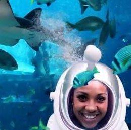 Cápa szafari Dubai