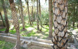 Al Ain, ősi öntözőrendszer, faladzs (falaj)
