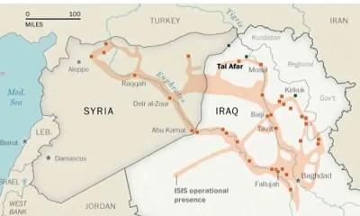 Libri: l'Isis spiegato da Nicholas Hénin