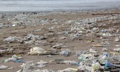 Takeaway: una marea di plastica negli Uae