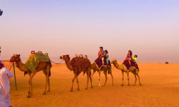 Cooper Tourism LLC - Dubai Tour Operators