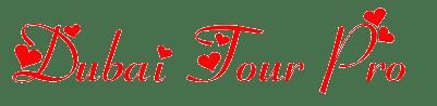 Dubai Tour pro