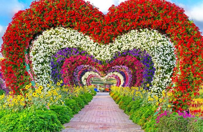 Hearts Passage