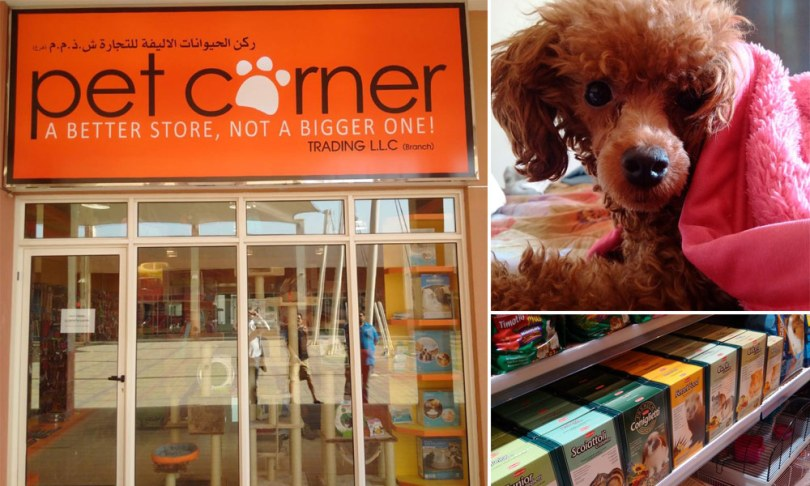Pet Corner Dubai
