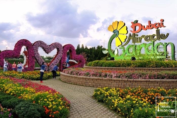 45 Photos of the Amazing Dubai Miracle Garden  Dubai