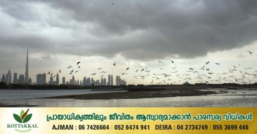 The Met Office has forecast showers in some parts of the UAE this afternoon_dubaivartha