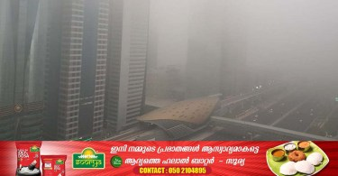Fog in many parts of the UAE: Warning that visibility will decrease