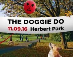 The Doggie Do in Dublin
