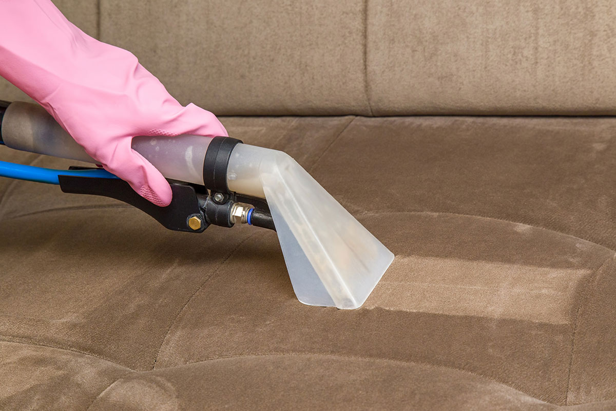 upholstery cleaning s for sofas pottery barn turner leather sofa reviews dublin organic services