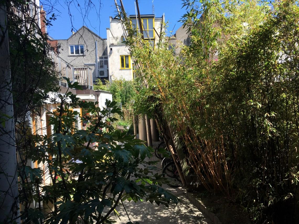 Green building cafe garden