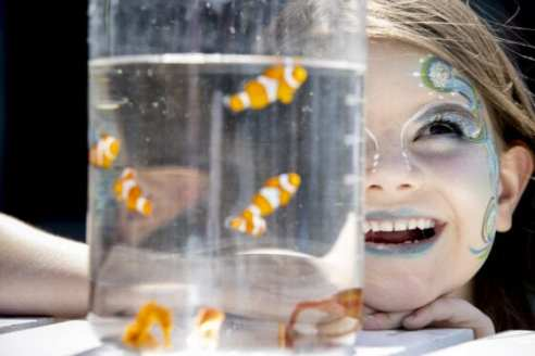 Dundrum Town Centre announces the launch of their outdoor summer experience – 'Deep Sea Dundrum'