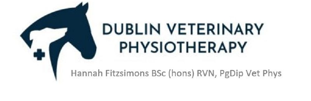 Dublin Veterinary Physiotherapy